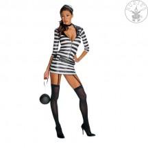 Foxy Felon - kostým - VADA